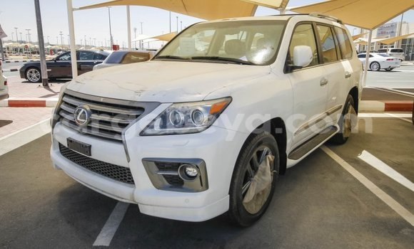Buy Lexus LX White Car in Dire Dawa in Ethiopia