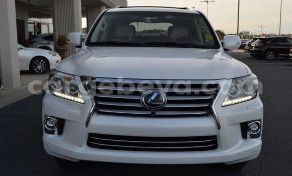 Buy Lexus LX 570 White Car in Maych'ew in Ethiopia