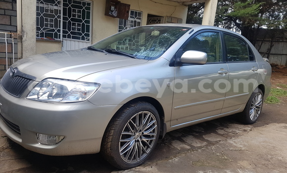 Buy Toyota Corolla Other Car in Addis Ababa in Ethiopia